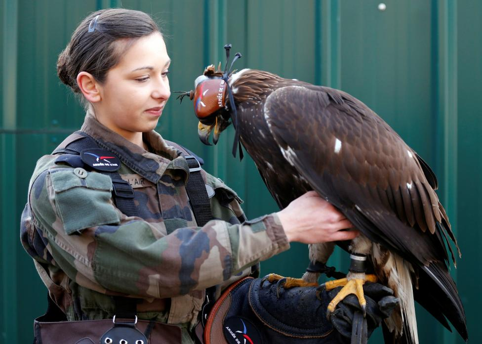 A French army falconer works with a golden eagle as part of a military training for combat against drones in Mont de Marsan French Air Force base, Southwestern France